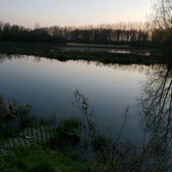De oude Schelde in Meilegem