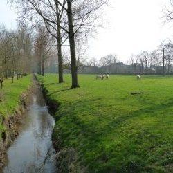 De Zwalmbeek
