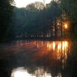 rivierenhof2
